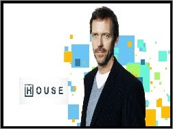 Hugh Laurie, Serial, House, Aktor